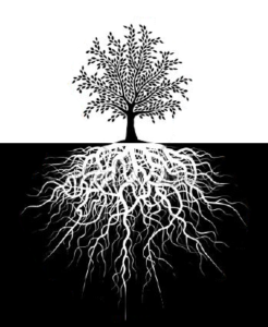 Livstræet